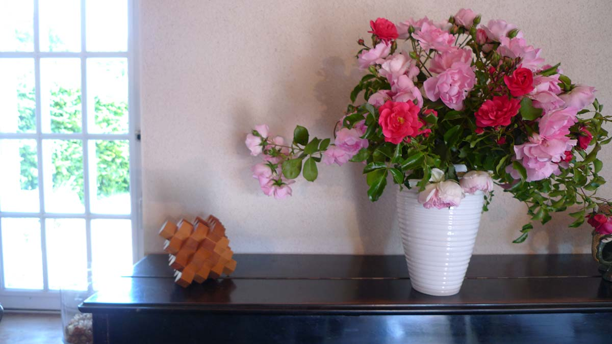 fleurs Location gite Garnaud8