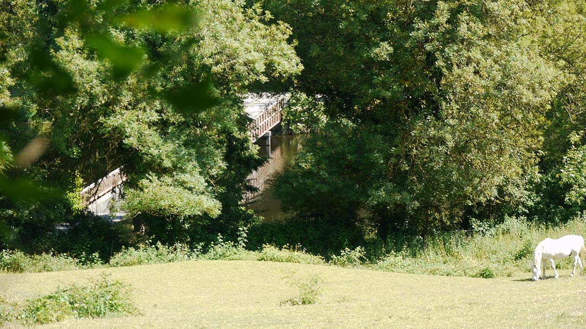 vue gite les Lilas Vendée
