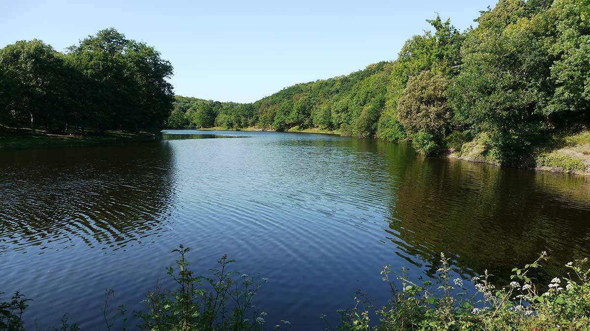 lac de Finfarine vendée